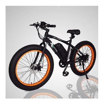 Ego Bike Fat Tire Electric Bike Beach Snow Bicycle
